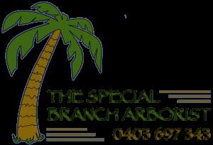 The Special Branch Arborist Melbourne