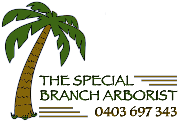 The Special Branch Arborist Melbourne